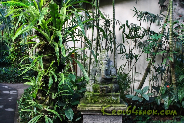 Elephant_Safari_Park_Ubud-2